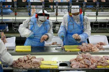 Medium industria de alimentos