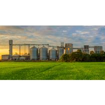 Principales sectores económicos del Paraguay
